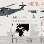 Merlin_infographic